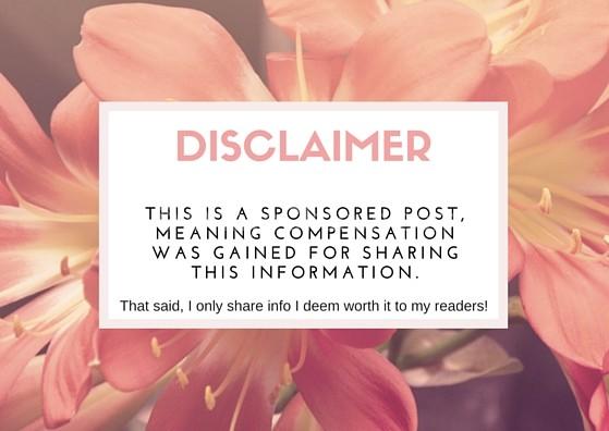 Disclaimer (2)