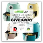GoWISE USA Air Fryer Giveaway 8/31 @GoWISEUSA @SMGurusNetwork