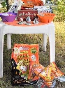 Favorite Palmer Candy